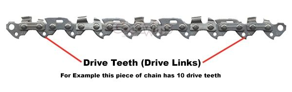 Drive Teeth Diagram